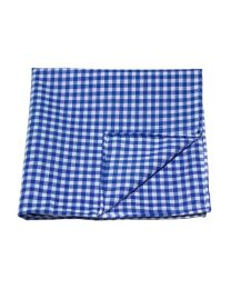 Gingham medium blue
